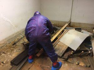 Kansas City Mold Removal Technician