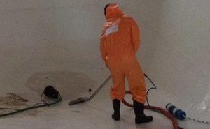 Mold Tech Cleaning Up After A Flood
