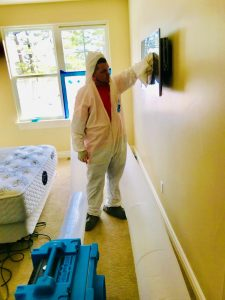 Mold Removal Services After A House Flood